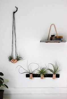 Who doesn't love airplants? All the benefits of greenery, with a quarter the work. With these mini copper planters from Poppytalk—requiring only leather and copper couplings, easily available at any home renovation store—they're perfectly chic.   - HouseBeautiful.com