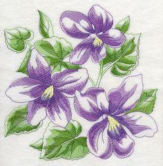 Sketched Violets design (J9149) from www.Emblibrary.com