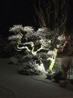 Germany Burscheid  Winter in Burscheid-Hilgen