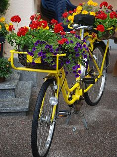 Now doesn't this look lovely. This dressed bike would look fabulous anywhere.  Looks like it could even be taken for a gentle ride too. Thanks to Lyudmila for sharing this pin MAKETRAX.net - Bicycles and FLOWERS