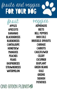 How to Add Summer Fruits and Vegetables to Your Dog's Diet http://onegr.pl/1vWEZn9 #veganpet #summer: