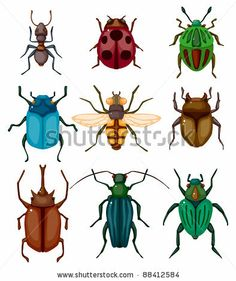 cartoon insect bug icon - stock vector