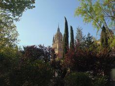 Las Catedrales de Salamanca, vistas desde el huerto de Calixto y Melibea.