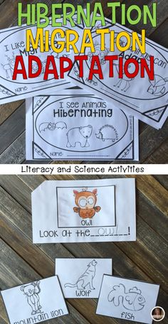 Hibernation, Migration and Adaptation Science and Literacy Centersare great hands-on activities for you busy students. Students will love real hibernation pictures, large and small group activities, independent activities and interactive writing activities (shown here).