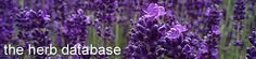 Looking for information on a specific herb? Look no further than our herb profile database. In our herb database, we have a collection of all the medicinal herbs, culinary herbs and growing wonders that we have ever covered. So enjoy our online exclusive herb list and start researching away.