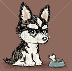 Siberian Husky and meal Royalty Free Stock Vector Art Illustration