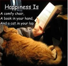 Happiness of a man...