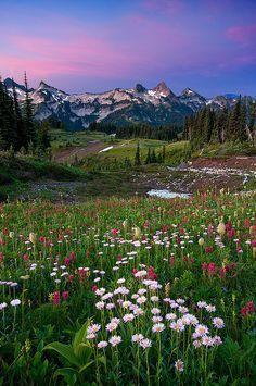 Mount Rainier, Tatoosh Range, Washington state - Photo by by Jesse Estes Beautiful World, Beautiful Places, Beautiful Pictures, All Nature, Amazing Nature, Mount Rainier National Park, Oh The Places You'll Go, Wyoming, Beautiful Landscapes
