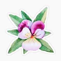 Pink Flamingos Birds, Food Stickers, Transparent Stickers, Glossier Stickers, Pansies, Sticker Design, Top Artists, Printables, Watercolor