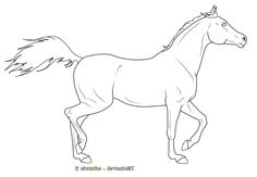 How to draw an arabian horse step by step. Drawing