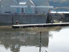 Amarrage du quai flottant dans la cale sèche