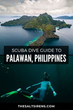 The Ultimate Scuba Dive Guide to Palawan, Philippines - The Salt Sirens Philippines Travel Guide, Philippines Palawan, China Travel, Japan Travel, Usa Travel, Travel Guides, Travel Tips, Travel Info, Travel Advice