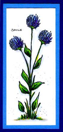 Clovers Card