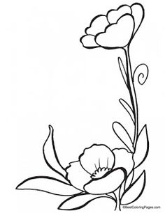 64 Best Poppy Coloring Page Images On Pinterest Flower Designs