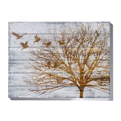 A statement piece in any room, the Tree Canvas from the decorator range features a beautiful winter tree image. At 60x80cm it fits nicely into almost any space.