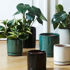 Bring nature indoors in elegant flowerpots. Three colours, two sizes. In stores now. Prices from DKK 29,90 / SEK 42,60 / NOK 42,60 / EUR 4,19 / ISK 824 / GBP 3,46  Søstrene Grene's interior catalogue is available online on www.sostrenegrene.com. You can find the link in the bio.  #ceramics #flowerpots #plants #newcollection #inspiration #sostrenegrene #søstrenegrene #grenehome