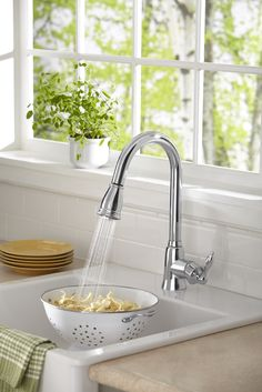 Danze Prince single handle pull-down kitchen faucet