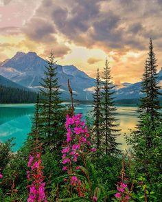 Around the world with me - Emerald Lake -Yoho National Park - British Columbia - Canada   Photo by @cbezerraphotos #visitplanett
