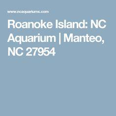 Roanoke Island: NC Aquarium   Manteo, NC 27954