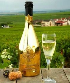 """Champagne from the Champagne region in France...all others are just """"sparkling wine""""! Cocktails, Alcoholic Drinks, Champagne Brands, Champagne Bar, Vintage Champagne, Vintage Wine, Armand De Brignac, Champagne Region, Ace Of Spades"""