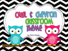 This made me think of you @Gwen Johnson   Owl and Chevron Classroom Theme Pack