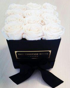 Collécion Perla Blanca - The Prestige Roses Madrid