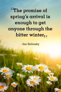"""Jen Selinsky:   """"The promise of spring's arrival is enough to get anyone through the bitter winter."""""""