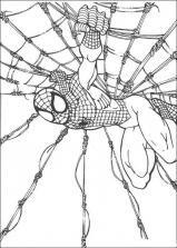 Coloriage Spiderman (11)