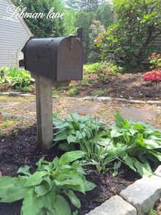 My Mailbox Garden for Storing Garden Tools - Lehman Lane
