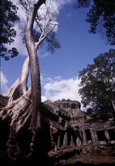 Preah Khan in Siem Reap, Cambodia