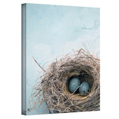 Gallery-wrapped canvas print with a bird's nest and egg motif. Made in the USA.  Product: Wall artConstruction Mater...