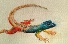 Flat Lizard, watercolor by Vandy Massey