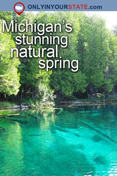 Travel | Michigan | Attractions | USA | Great Lakes | Places To Visit | Bucket List | Things To Do | Beautiful Places | Day Trips | Natural Springs | Summer | Swimming Spots | Emerald Pool | Hidden Gems | Outdoor | Adventure | Natural Wonders | Explore | Nature | Planet Earth | Road Trips | Weekend Getaway | Forest | State Parks