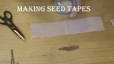 Making Seed Tapes:  Carrots and Radishes