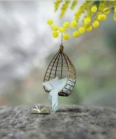 Pin by WG Travel Partner by Eunice on Tiny & Cute in 2019 Cool Pictures For Wallpaper, Cute Wallpaper Backgrounds, Pretty Wallpapers, Love Wallpaper, Miniature Photography, Cute Photography, Creative Photography, Beautiful Nature Wallpaper, Cute Cartoon Wallpapers