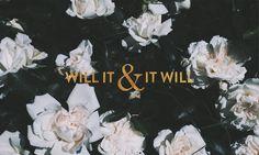 will-it