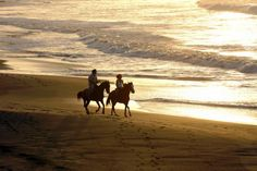 Go for a horseback ride on the beach, in the mountains or wherever the trail may lead.
