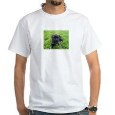 bullmastiff puppy 2 T-Shirt > Bullmastiff > Paw Prints