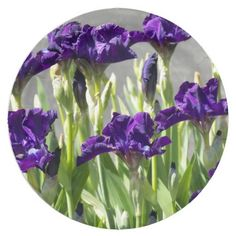 Purple Irises Floral 9 Inch Paper Plate #partyideas #partysupplies