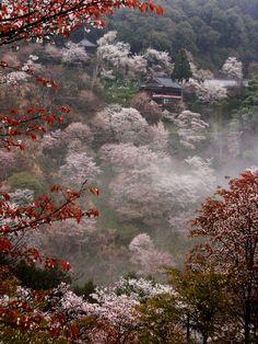 Yoshino misty temple | Paul Hillier | Flickr