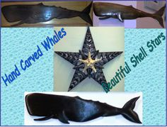 Awesome Hand Carved Whales made in Connecticut from a Variety of Woods and Beautiful Shell Stars Also made in Connecticut!