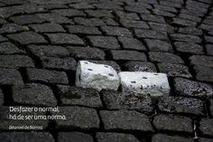 Metamorfoses: Janeiro 2013