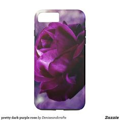 pretty dark purple rose
