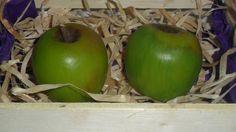 Sabonete Artesanal Maçã Verde <br>Produzida com matéria prima hipoalergênica <br>Base glicerinada branca, essência de maçã verde, extrato glicólico natural de maçã, lauril líquido, corante e pigmento cosmético a base de água. <br>Embalagem: Plástico especial para sabonetes e redinha limão <br>Preço referente a uma unidade <br>Produto feito a mão sob encomenda <br> <br>OBS: Embalagem caixinha ripada de feira para pedidos a partir de 4 ou mais unidades.