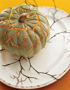 vine pumpkin....so cool!