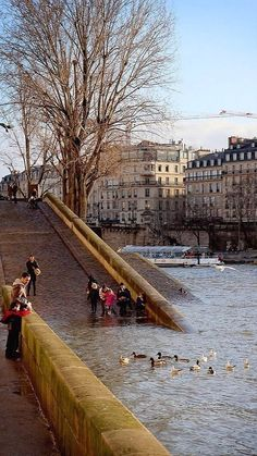 Quais de Seine, Paris | Flickr - Photo by Calinore