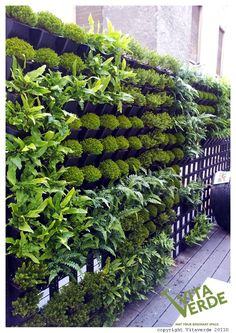 Outdoor #verticalgarden that beautifies a restaurant #balcony