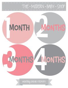 Baby Monthly Onesie Stickers, Monthly Onesie Stickers, Monthly Baby Onesie Stickers - Pink, Grey, Baby Girl, Grey, Pink on Etsy, $12.00