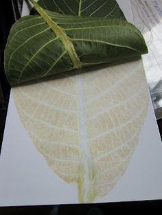 estampar con hojas naturales