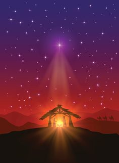 Estrella de Navidad - ilustración de arte vectorial